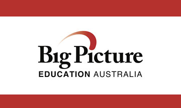 big picture logo